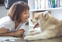 dog loves his master