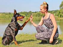 communication between woman and dog